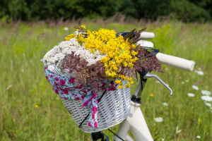 Comprar Flores Online, Ramos de Flores a Domicilio, Regalar Ramos de Flores, Floristería en Altea, Envíos Florales Urgentes a Altea